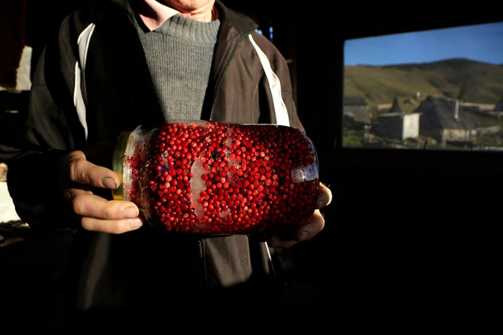 Local man showing big jar of cranberries, locally picked and preserved in sugar at Prokosko lake - Bosnia and Herzegovina