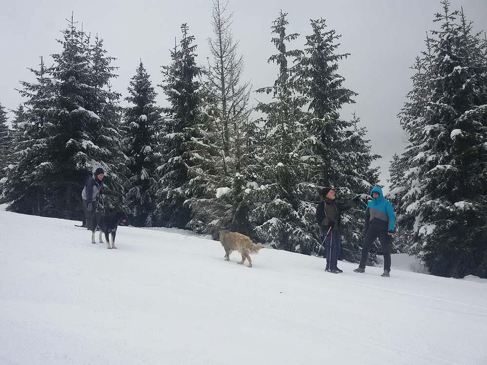 Bosnian winter holidays