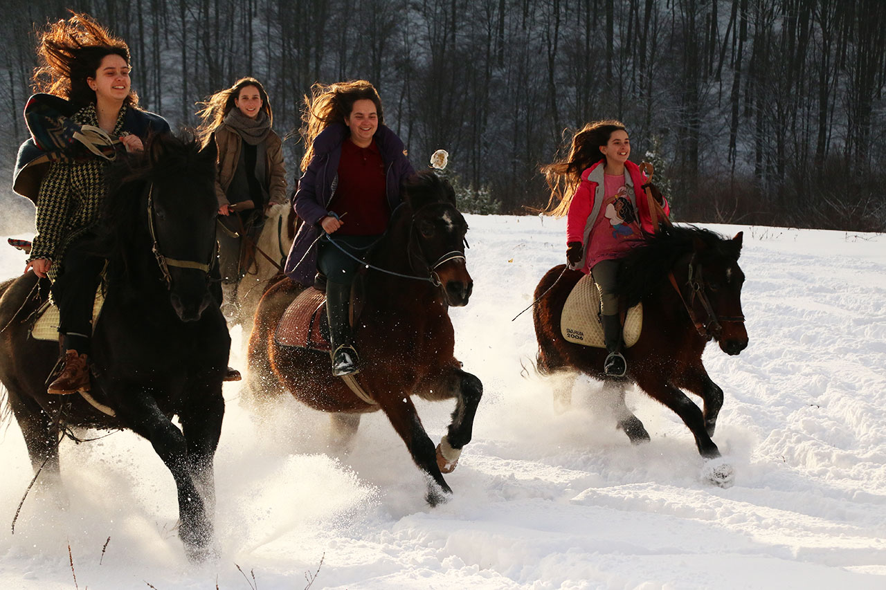 Horseback Riding in Bosnia and Herzegovina
