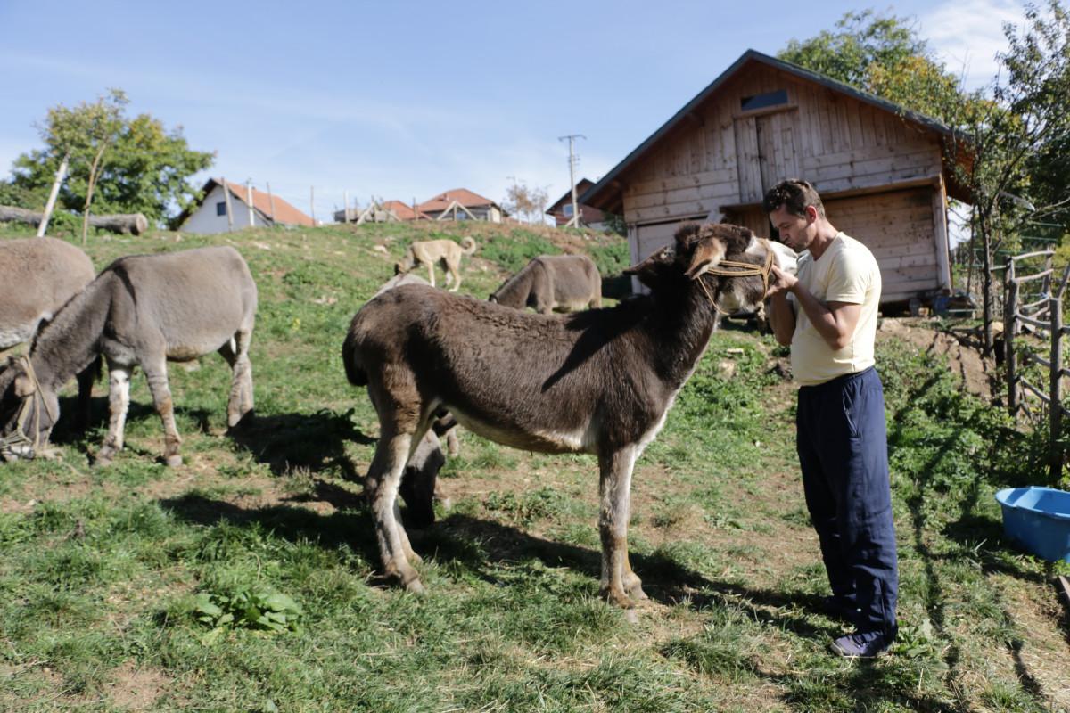 East Bosnia