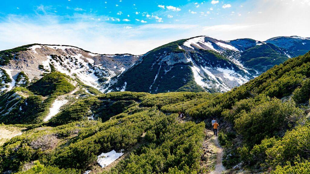 Beautiful panoramas of Cvrsnica mountain as the group passes through beatiful Mugo Pine forest