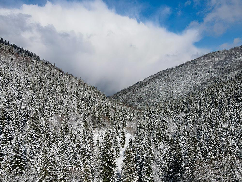 Scenery of the Vranica mountain on the trail towards Prokosko lake