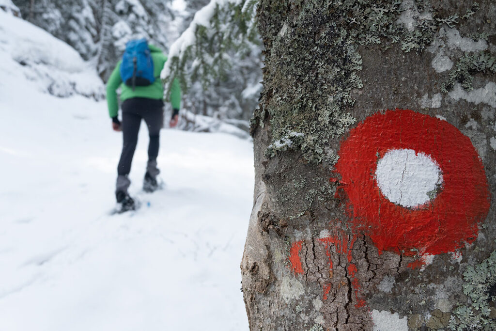 Snowshoeing at Vranica mountain